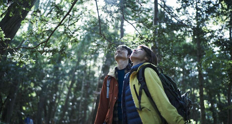 登山中に自然を感じるカップル