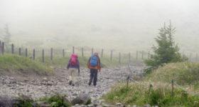 霧で曇る道を歩く2人組